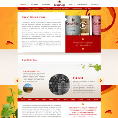Campo Viejo Website